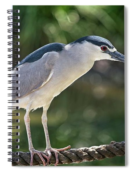 Heron On A Rope Spiral Notebook
