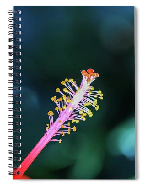 Hibiscus' Pistil Spiral Notebook
