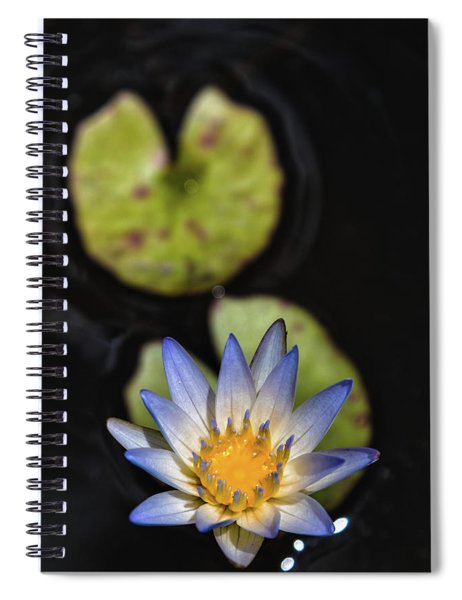 Hidden Jewel Spiral Notebook