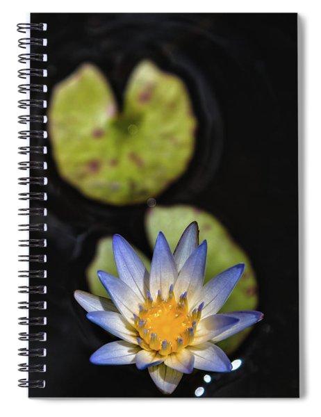 Hidden Jewel Spiral Notebook