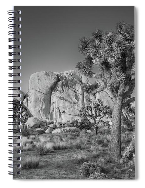 Hidden Valley Rock Spiral Notebook
