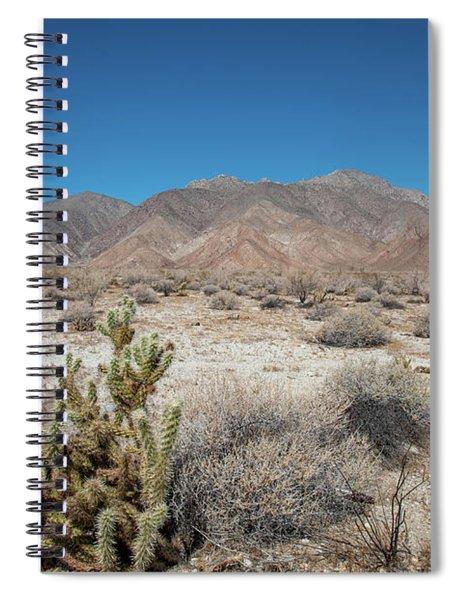 High Desert Cactus Spiral Notebook