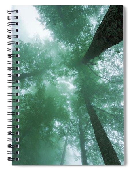 High In The Mist Spiral Notebook