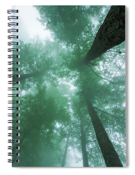 High In The Mist Spiral Notebook