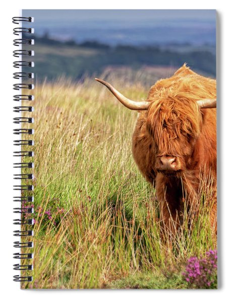Highland Cow In The Moor Spiral Notebook