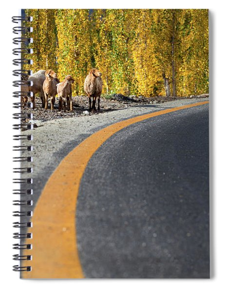 Highway Story Spiral Notebook