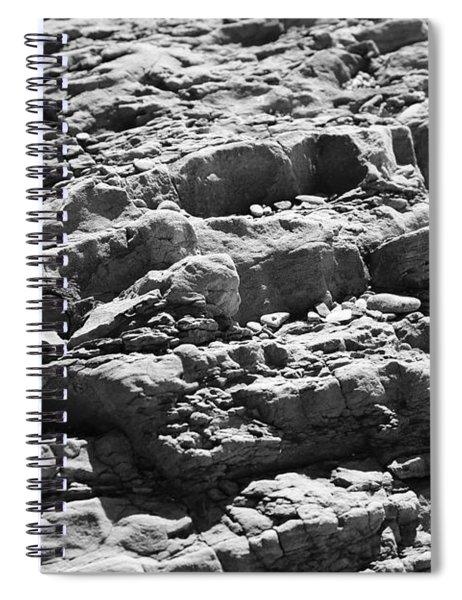 Historic Textures Spiral Notebook