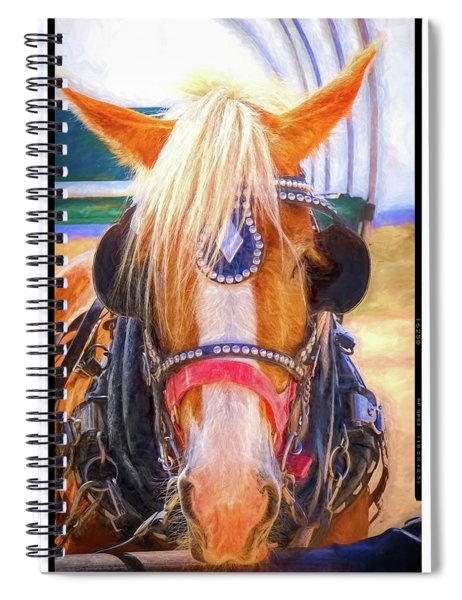Hitched Spiral Notebook