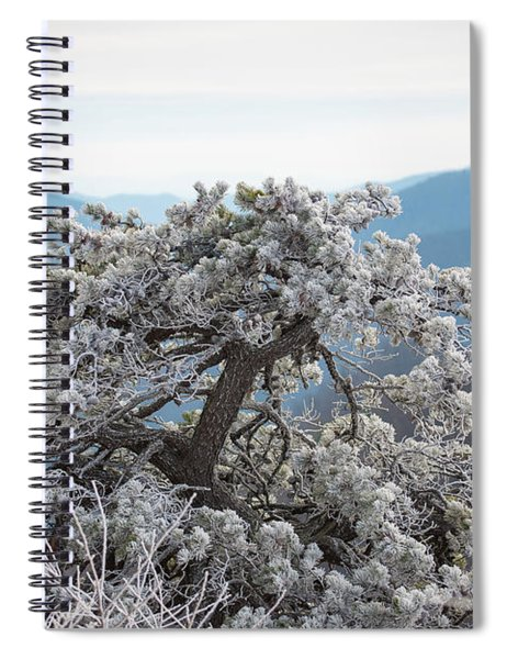 Hoarfrost In The Blue Ridge Mountains Spiral Notebook