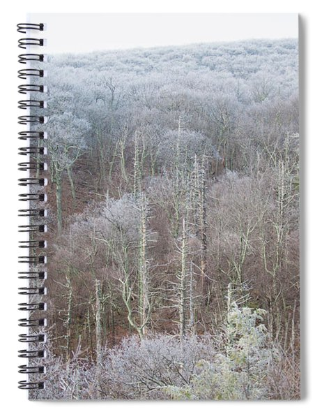 Hoarfrost In The Tree Tops Spiral Notebook