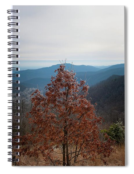 Hoarfrost On Fall Leaves Spiral Notebook