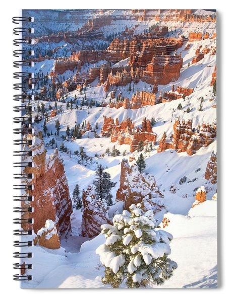 Hoodoos And Fir Tree In Winter Bryce Canyon Np Utah Spiral Notebook