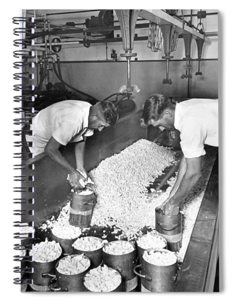Hooping Of The Curd  Mount Tyson Co Op Dairy Association Cheese Factory  November 1951 Spiral Notebook