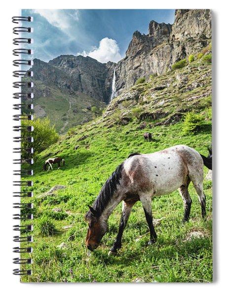 Horse On Balkan Mountain Spiral Notebook