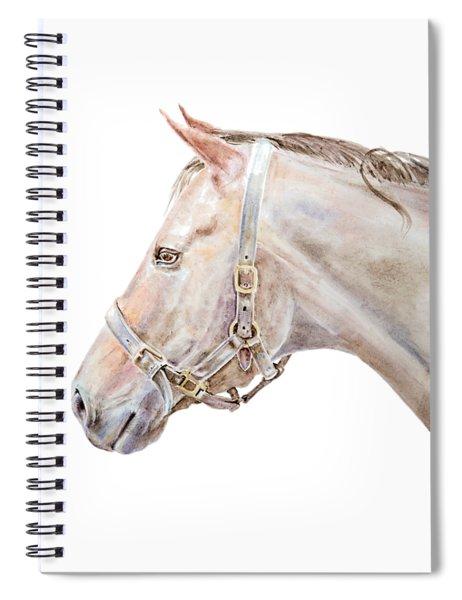 Horse Portrait I Spiral Notebook