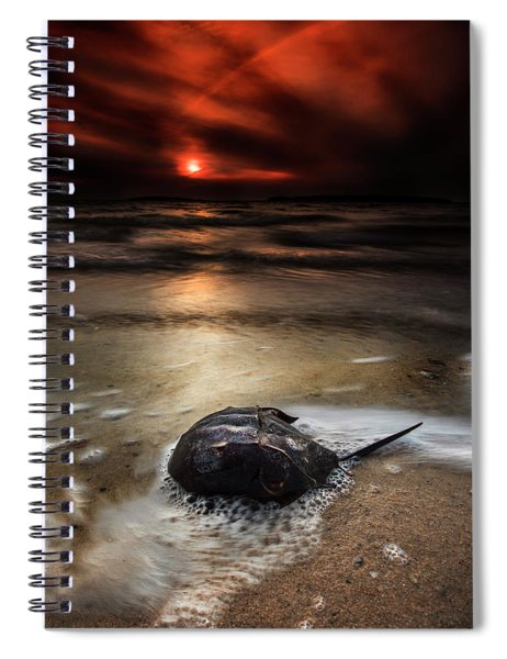 Horseshoe Crab And Sunset Spiral Notebook