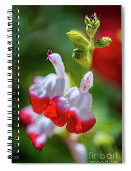 Hot Lips Spiral Notebook