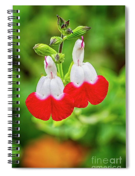 Hot Lips Flower Spiral Notebook