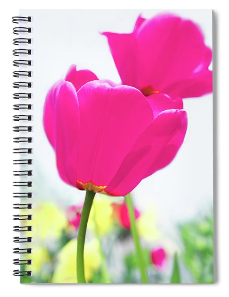 Spiral Notebook featuring the photograph Hot Pink Prelude by Emily Johnson