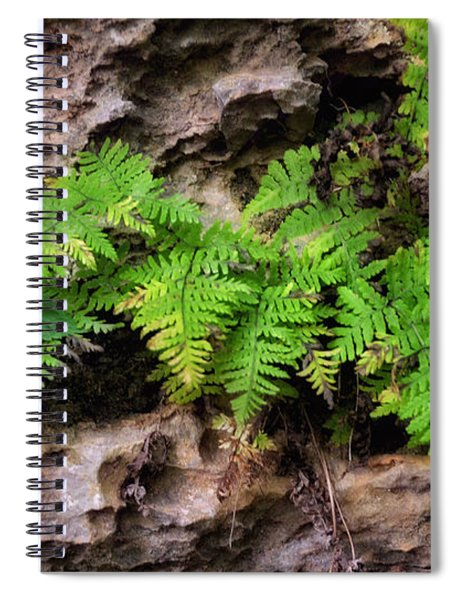 House Of Stone Spiral Notebook