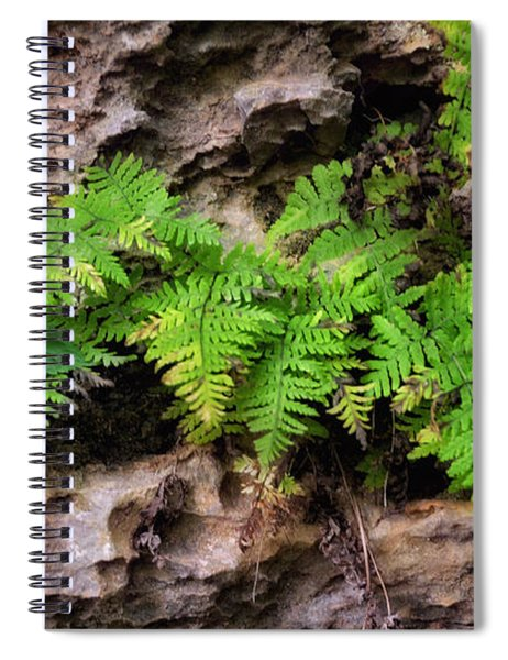 Spiral Notebook featuring the photograph House Of Stone by Andrea Platt