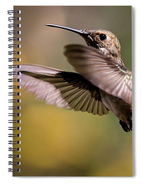 Hummer 4 Spiral Notebook
