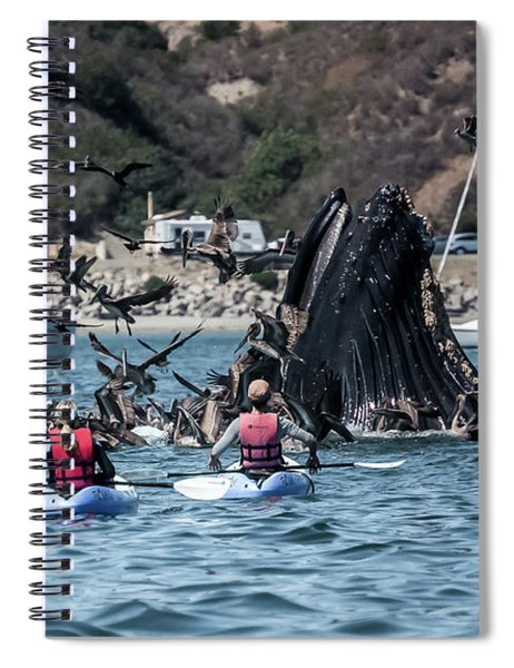 Humpbacks In Avila Harbor Spiral Notebook