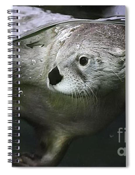 I Otter Be Swimming Spiral Notebook