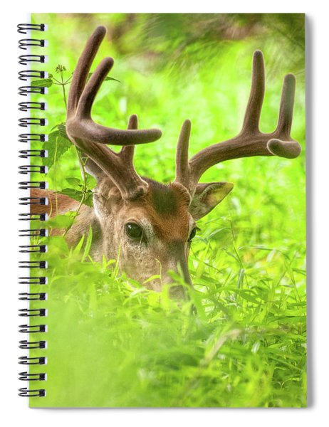 I Spy With My Little Eye Spiral Notebook