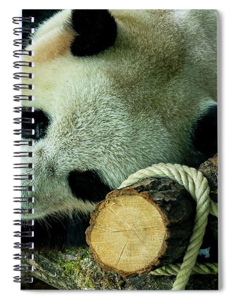 I Will Just Take A Little Nap Folks, So Amuse Yourselves Spiral Notebook