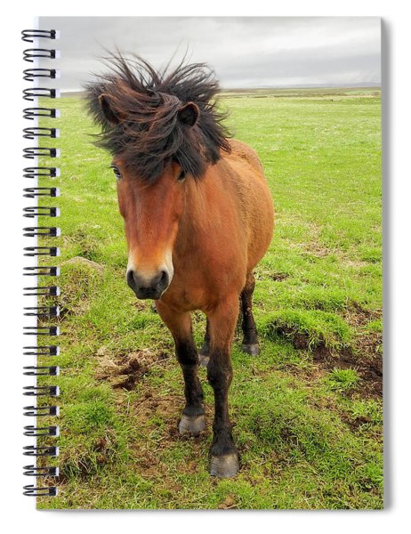 Icelandic Horse With Tousled Mane Spiral Notebook