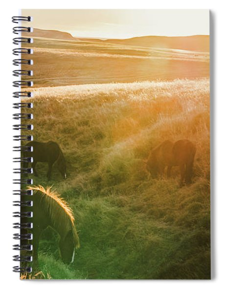Icelandic Landscapes, Sunset In A Meadow With Horses Grazing  Ba Spiral Notebook