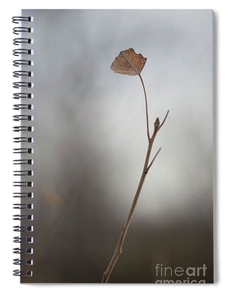 If I Ever Return Here Spiral Notebook