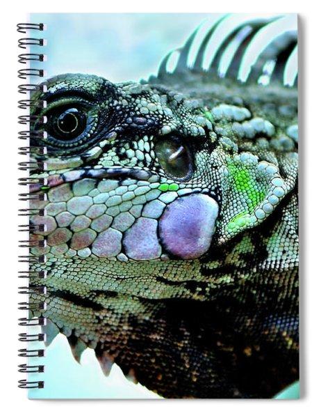 Iggy Spiral Notebook