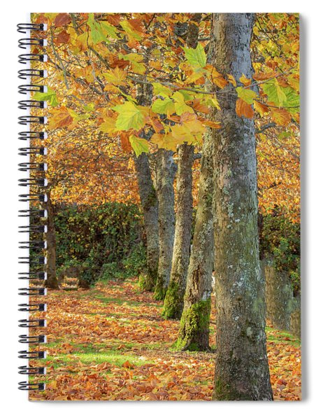 In A Row Spiral Notebook