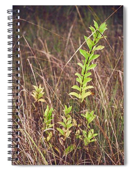 In Tall Grass Spiral Notebook