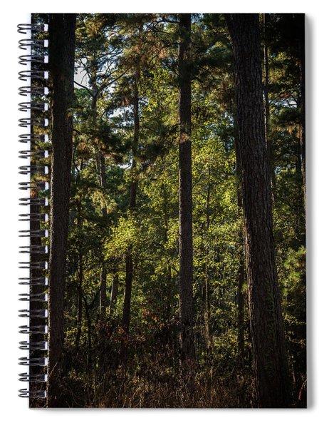 In The Darkening Woods Spiral Notebook