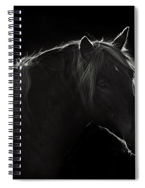 In The Shadow Spiral Notebook