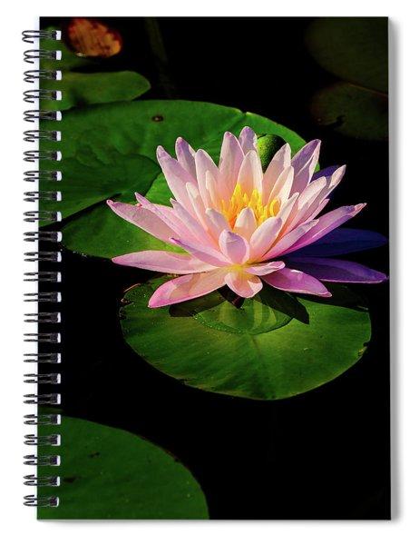 In The Spotlight Spiral Notebook