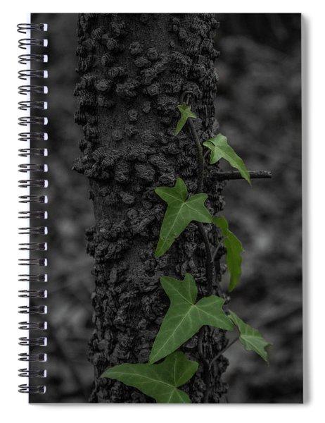 Industrious Ivy Spiral Notebook