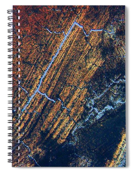 Ingrained Spiral Notebook