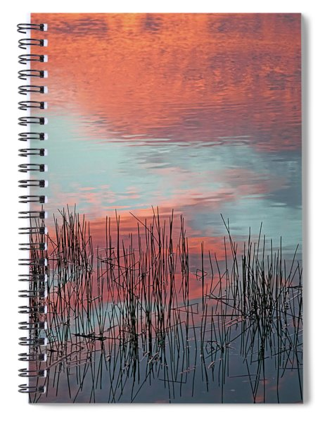 Inspiration For A Snowbird Spiral Notebook