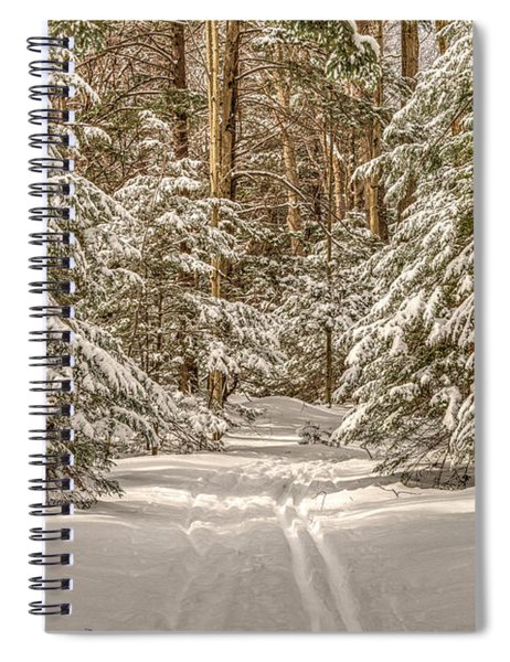 Spiral Notebook featuring the photograph Into The Forest by Rod Best