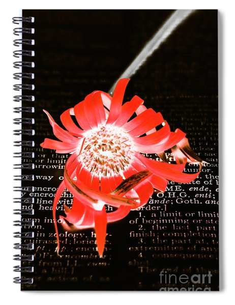 Inversion To The Mean Spiral Notebook