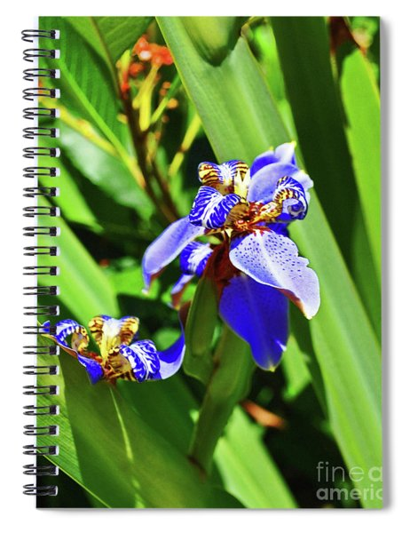 Iris Up Close Spiral Notebook