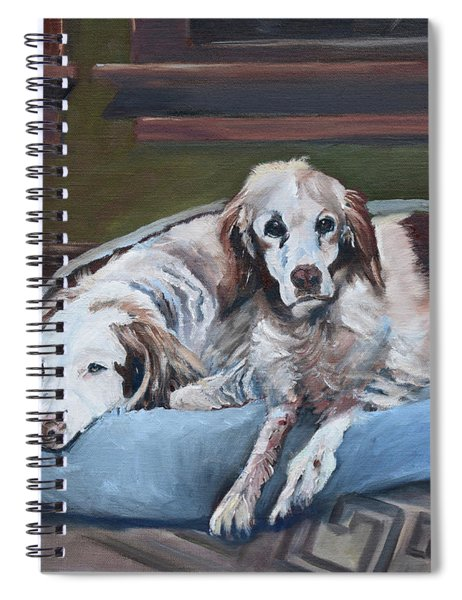 Irish Red And White Setters - Archer Dogs Spiral Notebook by Jan Dappen