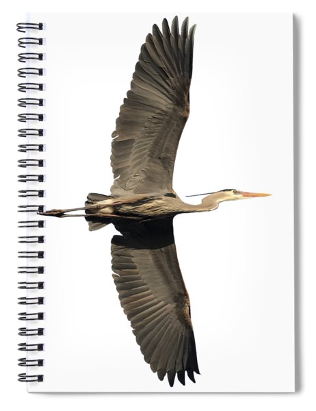 Isolated Great Blue Heron 2018-1 Spiral Notebook