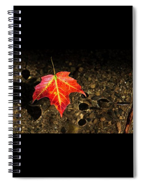 Isolated Spiral Notebook