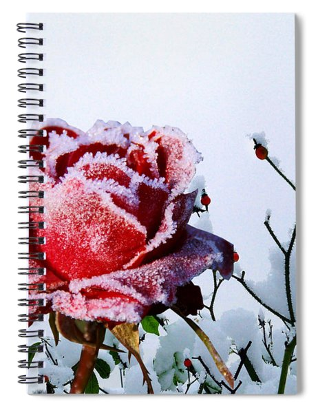 Jack Frost Spiral Notebook