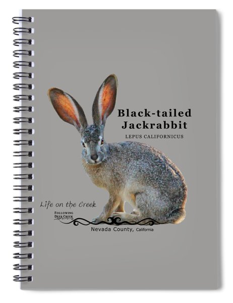 Jackrabbit Spiral Notebook